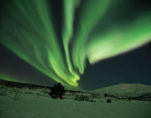 Nordlystur til Tromsø