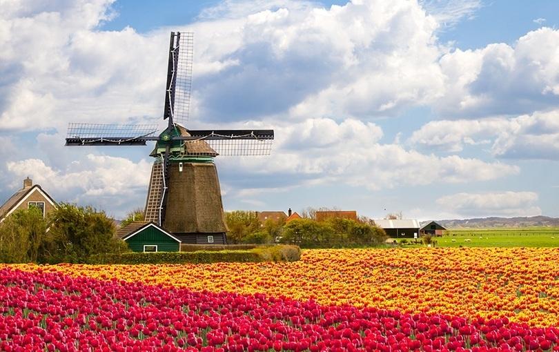 Blomstringstur til Holland